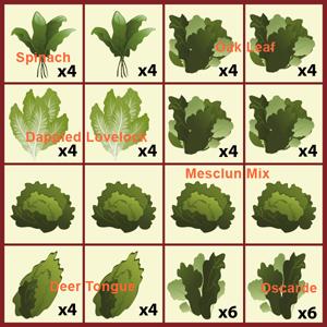 MINIFARMBOX-Planting-Menu-Baby-Greens-300x300