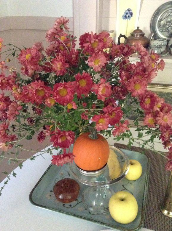 image from http://gardenrooms.typepad.com/.a/6a00e008cbe8b58834019b00421971970b-pi