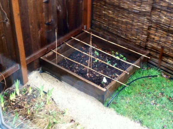 image from http://gardenrooms.typepad.com/.a/6a00e008cbe8b5883401a3fcbf383c970b-pi