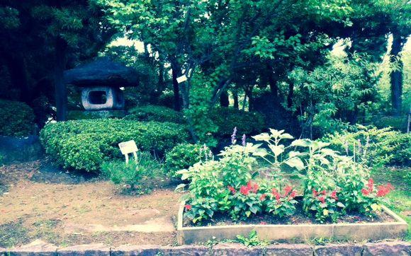 image from http://gardenrooms.typepad.com/.a/6a00e008cbe8b5883401a511e589c9970c-pi