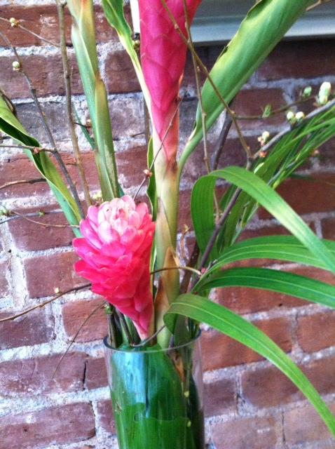 image from http://gardenrooms.typepad.com/.a/6a00e008cbe8b5883401a73d6ab997970d-pi