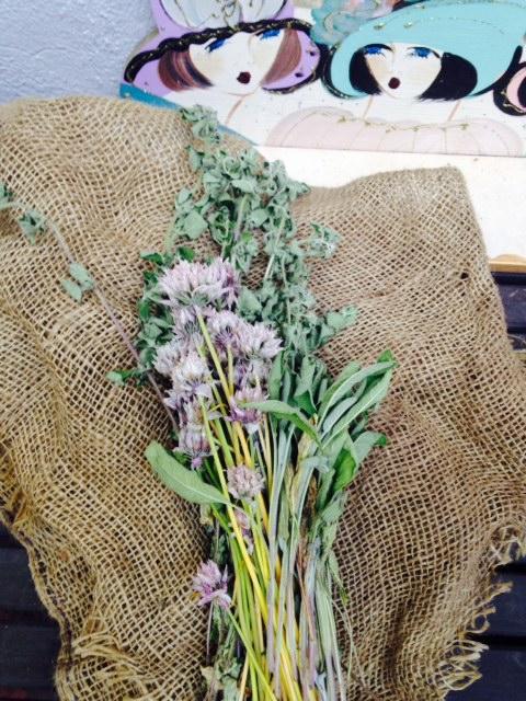 image from http://gardenrooms.typepad.com/.a/6a00e008cbe8b5883401a3fd198f7c970b-pi