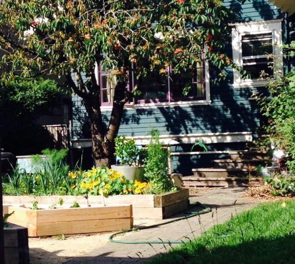 image from http://gardenrooms.typepad.com/.a/6a00e008cbe8b5883401a3fd198f8c970b-pi