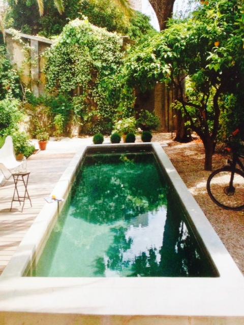image from http://gardenrooms.typepad.com/.a/6a00e008cbe8b5883401a73df98688970d-pi