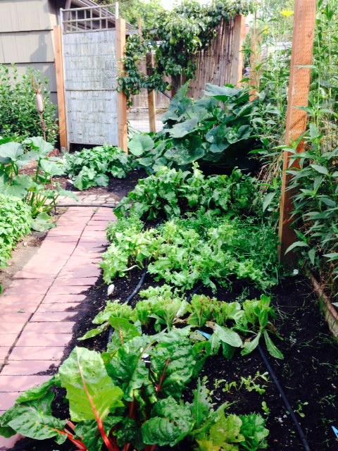 image from http://gardenrooms.typepad.com/.a/6a00e008cbe8b5883401a511f7e192970c-pi