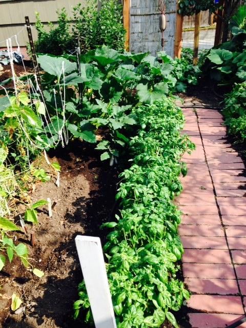 image from http://gardenrooms.typepad.com/.a/6a00e008cbe8b5883401b7c6cd728c970b-pi