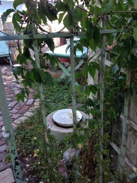 image from http://gardenrooms.typepad.com/.a/6a00e008cbe8b5883401bb0799daf0970d-pi