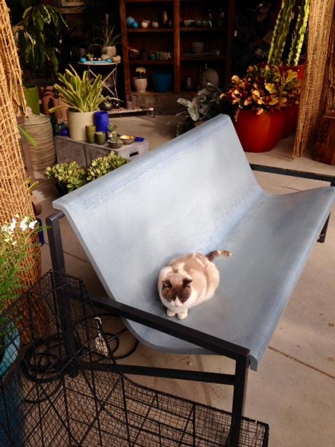 image from http://gardenrooms.typepad.com/.a/6a00e008cbe8b5883401b8d08ea3ba970c-pi