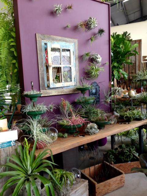 image from http://gardenrooms.typepad.com/.a/6a00e008cbe8b5883401b8d08ea3c4970c-pi