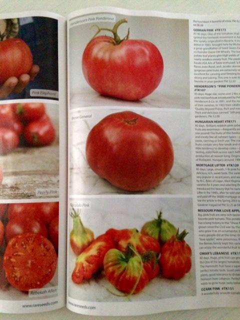 image from http://gardenrooms.typepad.com/.a/6a00e008cbe8b5883401b7c7230d26970b-pi