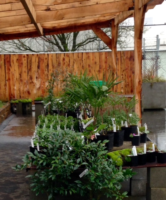 image from http://gardenrooms.typepad.com/.a/6a00e008cbe8b5883401bb07dce4cf970d-pi