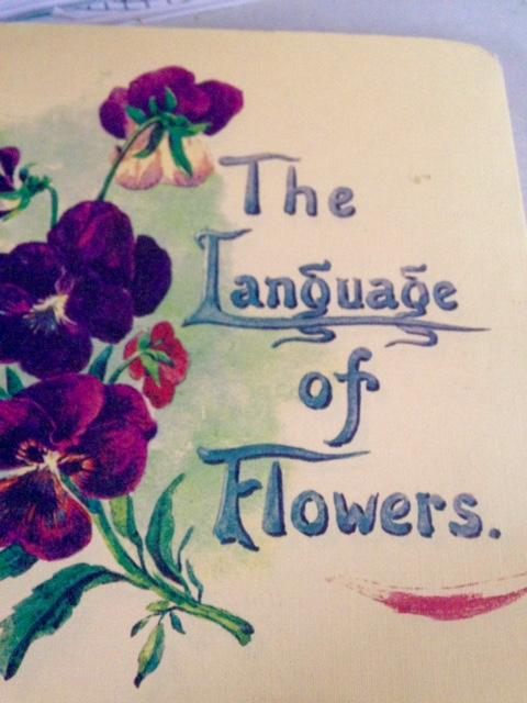image from http://gardenrooms.typepad.com/.a/6a00e008cbe8b5883401b7c7707887970b-pi