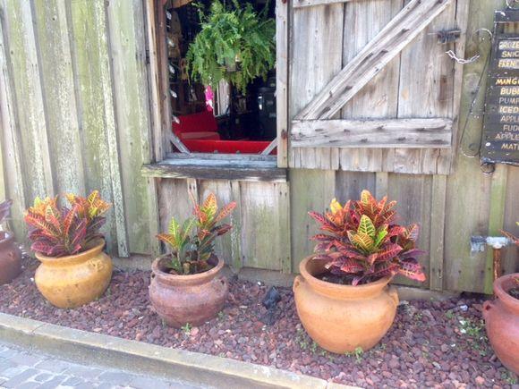 image from http://gardenrooms.typepad.com/.a/6a00e008cbe8b5883401b8d10d953f970c-pi