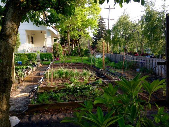 image from http://gardenrooms.typepad.com/.a/6a00e008cbe8b5883401bb082b7209970d-pi