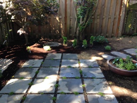 image from http://gardenrooms.typepad.com/.a/6a00e008cbe8b5883401b7c78982de970b-pi