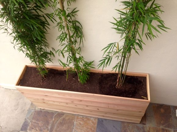 image from http://gardenrooms.typepad.com/.a/6a00e008cbe8b5883401b8d1188073970c-pi