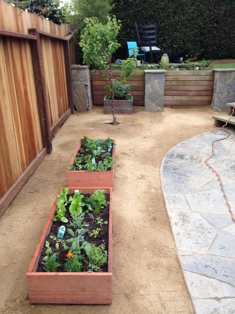image from http://gardenrooms.typepad.com/.a/6a00e008cbe8b5883401b8d118fd64970c-pi
