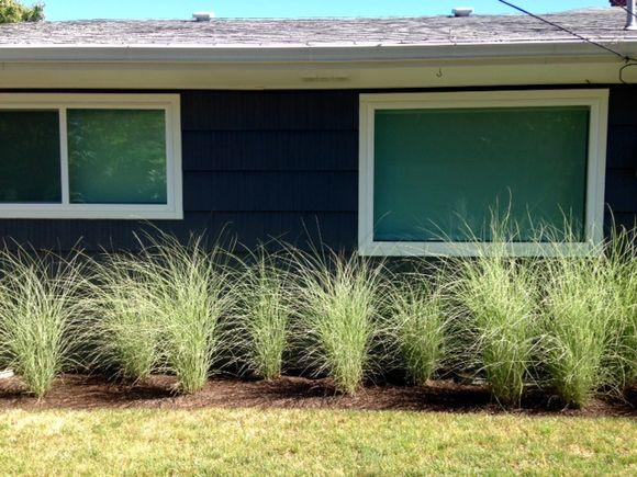 image from http://gardenrooms.typepad.com/.a/6a00e008cbe8b5883401bb08495243970d-pi