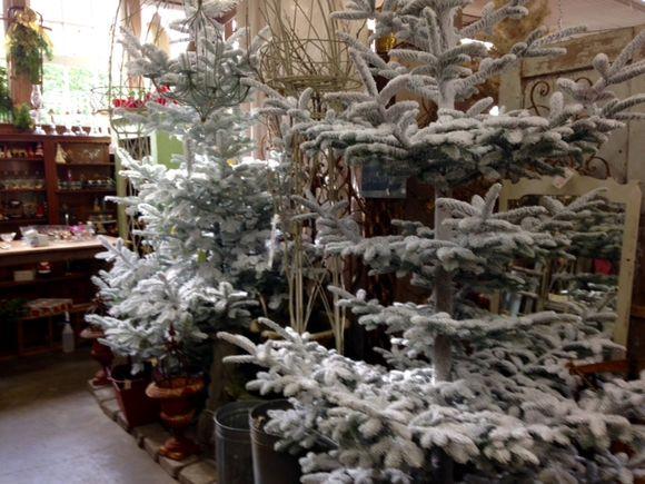 image from http://gardenrooms.typepad.com/.a/6a00e008cbe8b5883401b7c7f84e74970b-pi