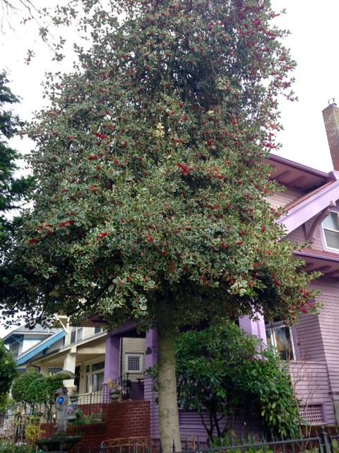 image from http://gardenrooms.typepad.com/.a/6a00e008cbe8b5883401bb089c915e970d-pi