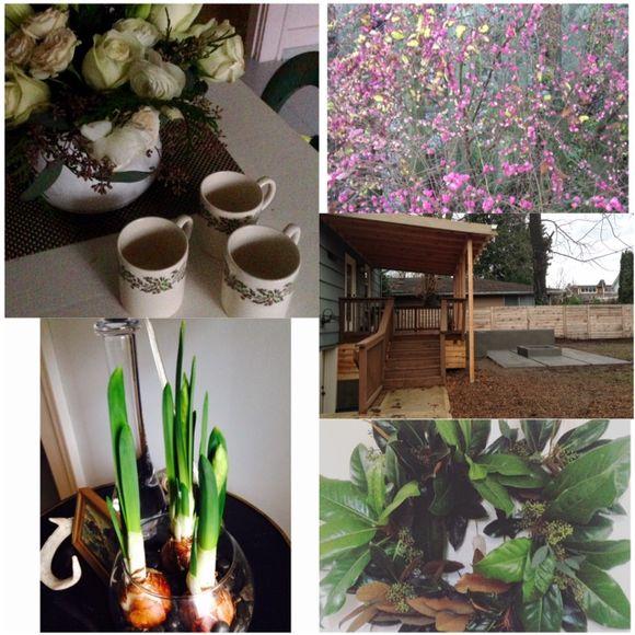 image from http://gardenrooms.typepad.com/.a/6a00e008cbe8b5883401b7c80068a0970b-pi