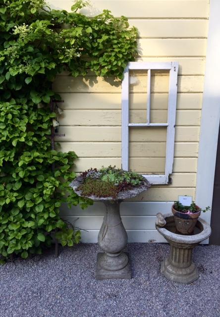 image from http://gardenrooms.typepad.com/.a/6a00e008cbe8b5883401b7c8685263970b-pi