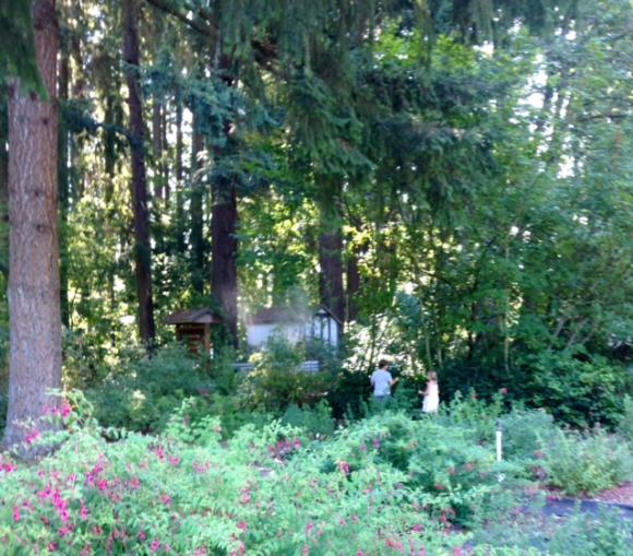 image from http://gardenrooms.typepad.com/.a/6a00e008cbe8b5883401b8d1ff8462970c-pi
