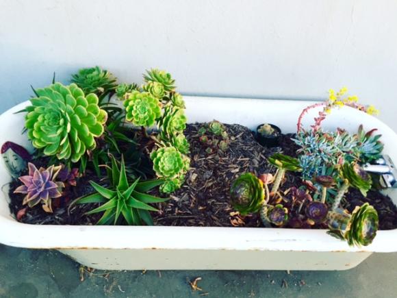 image from http://gardenrooms.typepad.com/.a/6a00e008cbe8b5883401b7c88ecfa0970b-pi