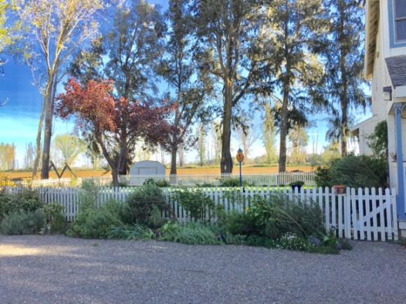 image from http://gardenrooms.typepad.com/.a/6a00e008cbe8b5883401b7c8e97ca9970b-pi