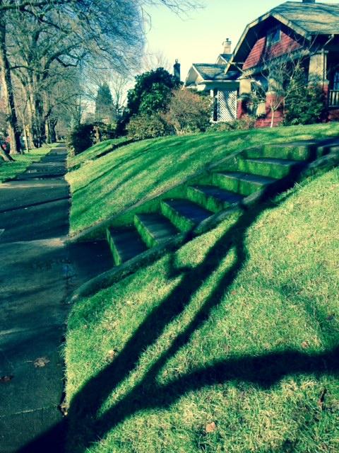 image from http://gardenrooms.typepad.com/.a/6a00e008cbe8b5883401b7c71d8b54970b-pi