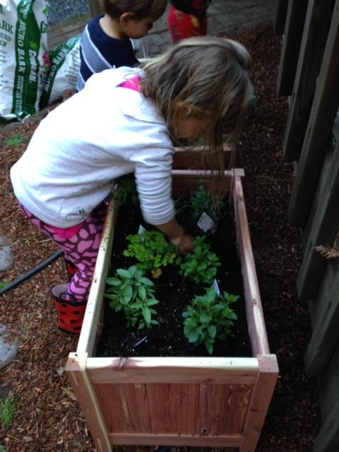 image from http://gardenrooms.typepad.com/.a/6a00e008cbe8b5883401bb07d853b3970d-pi