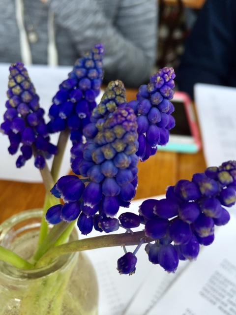 image from http://gardenrooms.typepad.com/.a/6a00e008cbe8b5883401b7c8291e46970b-pi