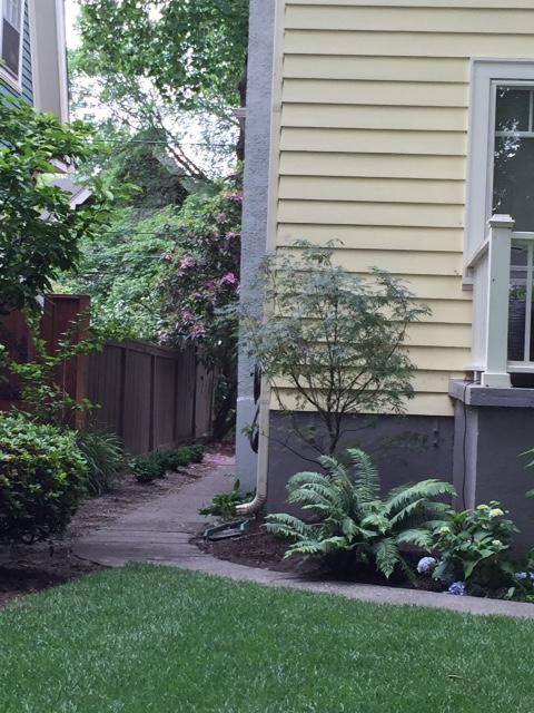 image from http://gardenrooms.typepad.com/.a/6a00e008cbe8b5883401bb09030bd4970d-pi
