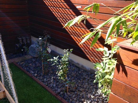 image from http://gardenrooms.typepad.com/.a/6a00e008cbe8b5883401b7c7342203970b-pi