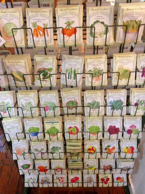 image from http://gardenrooms.typepad.com/.a/6a00e008cbe8b5883401b7c735e58c970b-pi