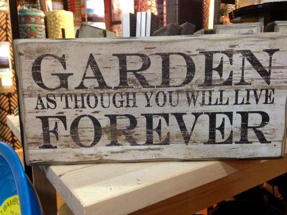 image from http://gardenrooms.typepad.com/.a/6a00e008cbe8b5883401bb07d99875970d-pi