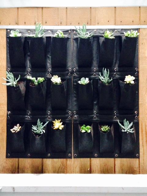 image from http://gardenrooms.typepad.com/.a/6a00e008cbe8b5883401b8d0e36fd1970c-pi