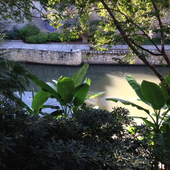 image from http://gardenrooms.typepad.com/.a/6a00e008cbe8b5883401b8d1686662970c-pi