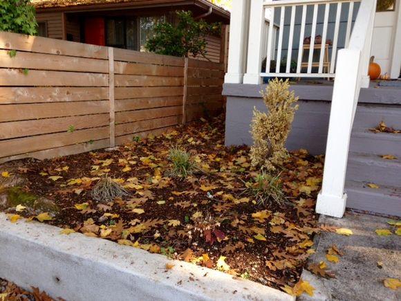 image from http://gardenrooms.typepad.com/.a/6a00e008cbe8b5883401b7c7f97dca970b-pi