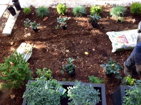image from http://gardenrooms.typepad.com/.a/6a00e008cbe8b5883401b8d183328c970c-pi