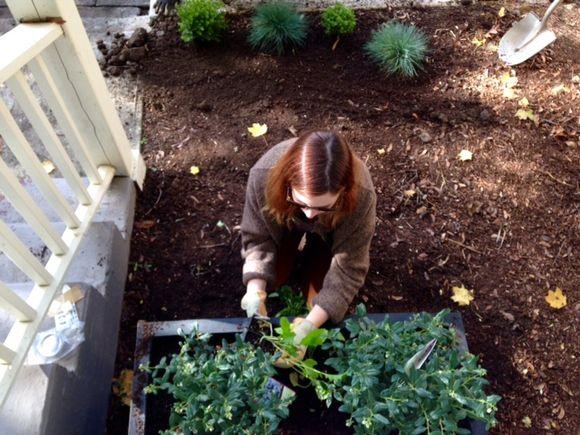 image from http://gardenrooms.typepad.com/.a/6a00e008cbe8b5883401b7c7f97dcd970b-pi