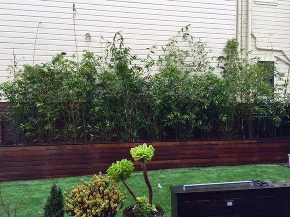 image from http://gardenrooms.typepad.com/.a/6a00e008cbe8b5883401b8d19d0f02970c-pi