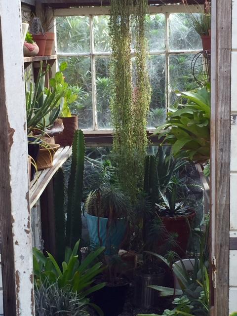 image from http://gardenrooms.typepad.com/.a/6a00e008cbe8b5883401b8d19d0f08970c-pi