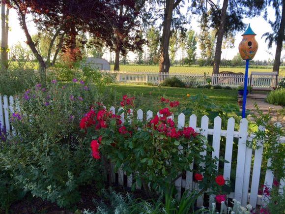 image from http://gardenrooms.typepad.com/.a/6a00e008cbe8b5883401b8d1d00f47970c-pi