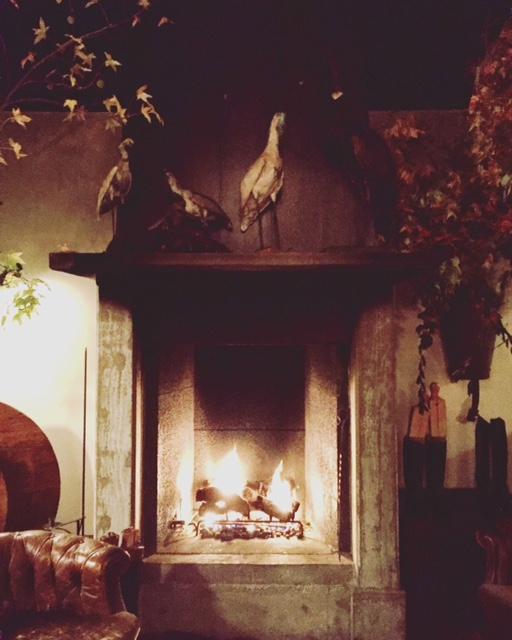 image from http://gardenrooms.typepad.com/.a/6a00e008cbe8b5883401b7c9427b83970b-pi