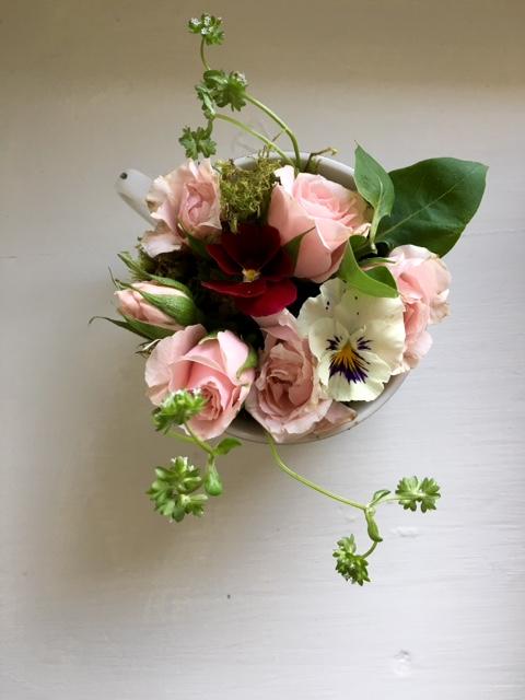 image from https://gardenrooms.typepad.com/.a/6a00e008cbe8b588340240a4adc94c200b-pi